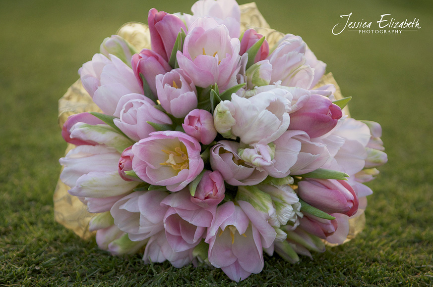 Jessica_Elizabeth_Photography_Pixie's_Petals_ Tulip_ Top.jpg