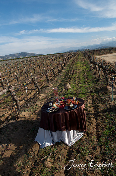 Ponte_Winery_Jessica_Elizabeth_Photography_Vineyard_Table.jpg