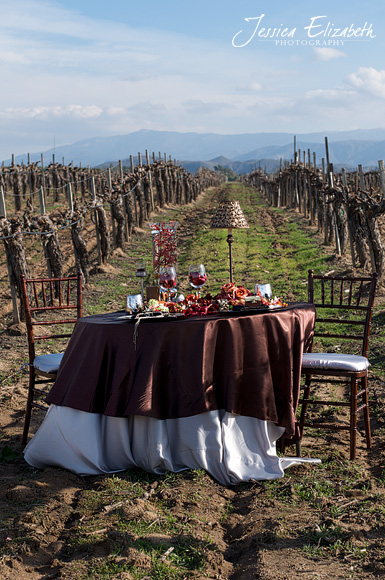 Ponte_Winery_Jessica_Elizabeth_Photography_Vineyard_Table_Chairs.jpg